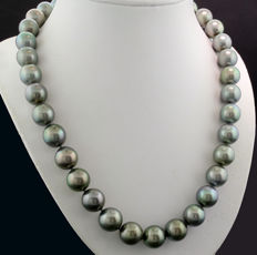 Noble Tahitian pearl necklace with silver-grey pearls of approx. 11-12mm in diameter, 585 white gold ---no reserve price---
