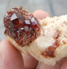 Natural Spessartite Garnet crystal cluster 0n Feldspar, with Mica Specimen - 52x29x31 mm - 42 gr