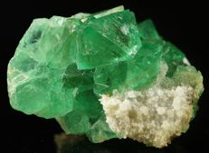 Rare vivid green Riemvasmaak Fluorite with quartz collectors specimen  - 7,0 x 6,0 x 4,2 cm - 284 gm
