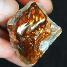 Untreated Large Natural Mexican Multicolored Fire Agate Rough - 33 x 30 x 29 mm - 220 ct