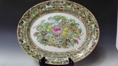 Butterfly Pastel Porcelain large Plate - China - 19th century