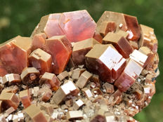 Large Red Vanadinite and Endlichite - main crystal: 16 mm - 10 x 7 x 3 cm - 460 g