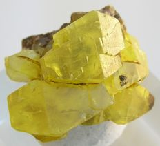 Yellow Bituminous Sulphur crystal - 2,8 x 2,5 x 2.2 cm - 11 gm
