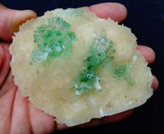 Superb green apophyllite crystal 'flowers' with stilbite crystals on matrix - 10 x 8 cm - 179 gm