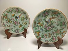 2 Famille Rose porcelain plates with bird and flower decorations - China - 19th century.