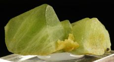Natural deep green Peridote crystal cluter  - 3,0 x 1,5 x 1,1 cm - 11,01 gm