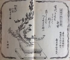 Woodblock print instruction booklet regarding flower arranging (Ikebana) – 青山御家御流 (Seizanguryu kado, or flower arranging according to the Seizanguryu school) - Japan - around 1900