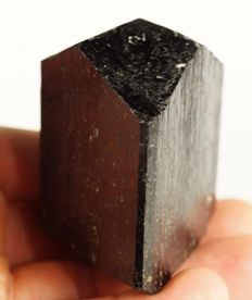 Large double terminated black Tourmaline crystal - 6,2 x 5,5 x 4,2 cm - 234 gm