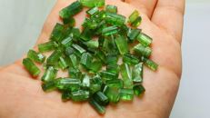 Beautiful green tourmaline crystal lot. - L 6-15mm , W 3-7mm. - 140 ct.