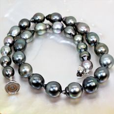 Magnificent black Tahiti BQ pearl necklace Ø 9.5 x 12.3 mm - AG925 magnetic clasp.