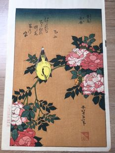 Woodblock print by Katsuhika Hokusai (1760-1849) (rare reprint) - Flowers, Bird, Bara-ni-Uguisu - Japan - around 1965