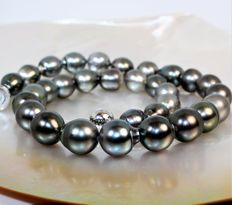 Magnificent black Tahiti BQ pearl necklace Ø 10.5 x 13 mm - AG925 magnetic clasp.