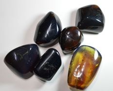 Fluorescent blue amber from Sumatra - between 36 x 31 x 30 mm and 61 x 40 x 20 mm - 152 g (6)