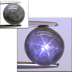 Star sapphire - 7.46 ct - No Reserve Price