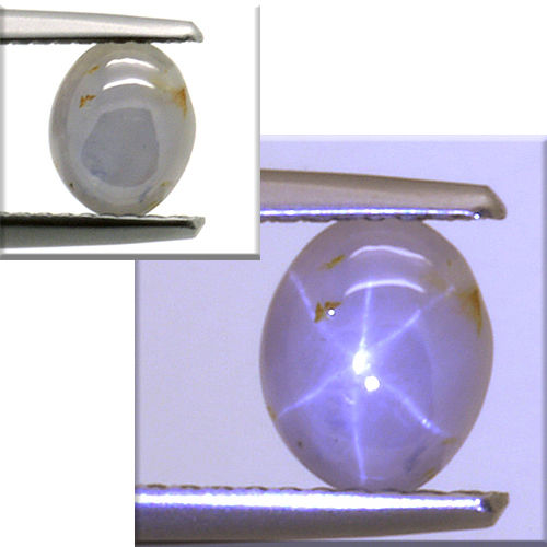 Star sapphire - 1.73 ct - No Reserve Price.