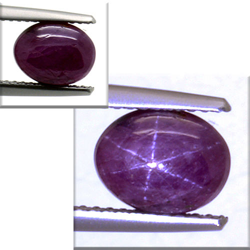 Star ruby – 3.98 ct – No reserve price