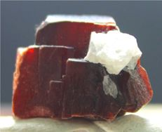 Rare Red Color Natural Tantalite Crystal - 19 x 14 x 13mm - 16gm - 79 cts