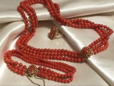 Set of Red Coral  Necklace & Bracelet and Ring, 3 strands. Combined weight: 75 grams.   Around 1960. Warm Colour, 100% genuine Red Corals.  2 Gold clasps plus Gold Ring