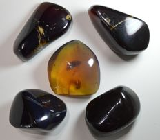 Fluorescent blue amber from Sumatra  - 165 g (5)
