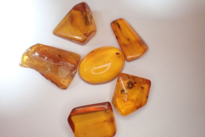 Baltic amber pieces with insect inclusions - 13-18 mm (6)
