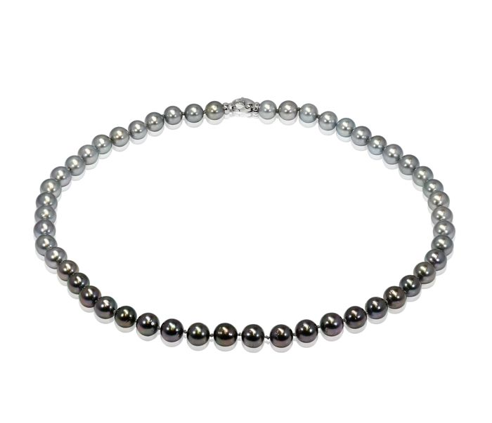 Round Tahitian Pearl Necklace 8.5x9mm in a beautiful rainbow of colours