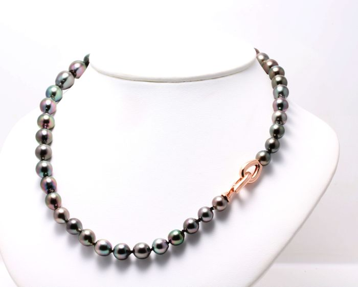 Lustrous 8-11 mm Tahitian Pearl Necklace Set with a Solid Silver Rose Clasp