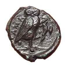 The Greek Antiquity - Sicily, Kamarina ca. 420-405 BC - Æ Uncia (12mm, 1,20g.) - Gorgon's head / Owl -  CNS II, 197; HGC 2, 1550
