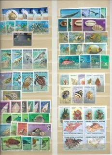 Topical – collection with fish and other aquatic animals.