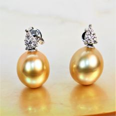 18 kt white gold earrings with diamonds and exceptional Southsea Golden cultured pearls