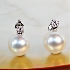 Superb 750 white gold Earrings with diamonds and Southsea round cultured pearls from Australia Ø 12 mm