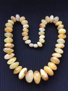 Baltic Amber necklace of 100% natural big doughnut Amber beads, yellow butter colour, 53.3 grams