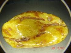 XXL Baltic Butterscotch - Amber, partially polished, approx. 107 g - 535 ct