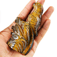 Top Golden Tiger Eye Parrot- 110x50x26 mm - 800 cts