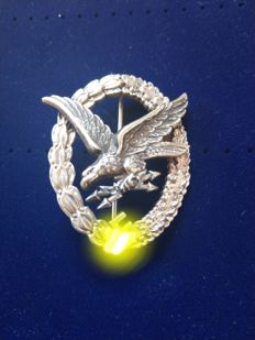 Flyer protection badge with lightning bundle