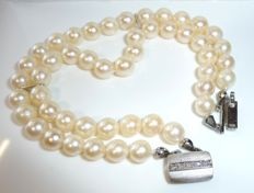 Two strand Akoya pearl bracelet with 14 kt / 585 white gold clasp and 5 diamonds 9.5 cm *no reserve*