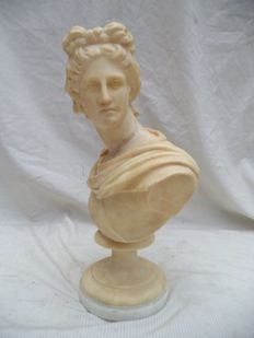 After the Apollo of Belvedère - alabaster bust - approx. 1900