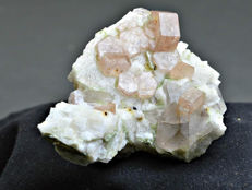 Lovely flourescent Apatite crystals with Quartz on feldspar -71x55x47mm-116 gr