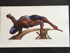 Simone Bianchi - Signed Limited Edition Lithograph / Print - Amazing Spider-man #202 Of 400