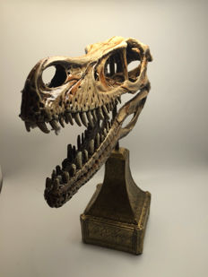 Full-size replica raptor Dinosaur skull, with custom stand - 26 x 19.5 x 9cm