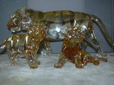 Swarovski - Silver Crystal SCS annual edition the Tiger - cubs (2)