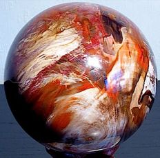 Large Petrified Wood sphere - 13.5 cm - 3123 gm