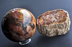 Petrified Wood - Sphere and freeform - 9.2 cm - 1073 gm - 9.2 X 5.9 X 4.4 cm - 431 cm