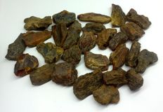 Collection of Raw Baltic Amber, large, untreated -  40-70 mm - 446 gm (20 plus)