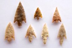 Lot with Neolithic arrowheads from Niger - 19 - 39 - mm (7)