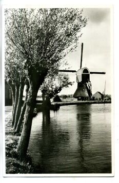 the Netherlands Mills period:1900-1960 93 x