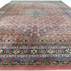 "Indo Bidjar - 350 x 254 cm - ""Large Oriental carpet in great condition"" - With certificate"