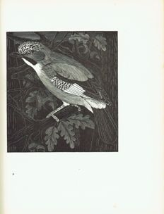 E. Fitch Daglish - Woodcuts of British Birds - 1925