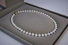 Yellow Gold 18k 8.5-9mm With White Round Japanese Saltwater Akoya Pearl Necklace 45CM