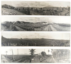 4 Large panoramic photos of Soemboel, a lemongrass plantation located above Singosari on Java, Indonesia - 1924