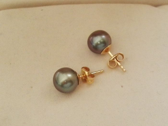 Earrings with Tahitian pearls of 8 mm in 18 kt yellow gold setting.   No reserve